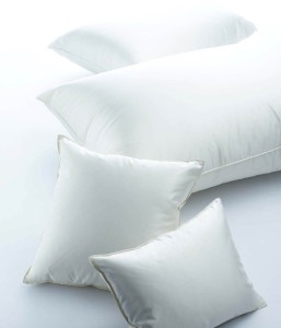 Excellence_Pillow
