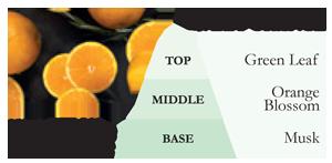 СладкийАпельсин